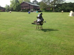 photo15-cow_on_lawn_reader
